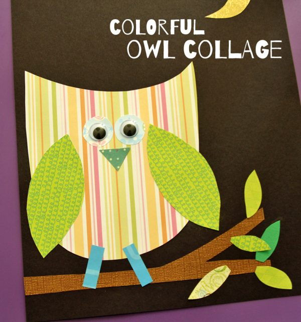 Colorful owl collage project