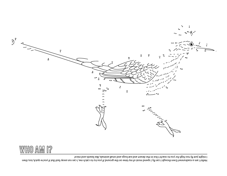 Bird Connect the Dot Coloring Page