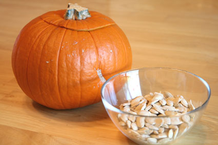 Pumpkin Seed Contest