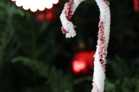 crystal candy cane science experiment for kids