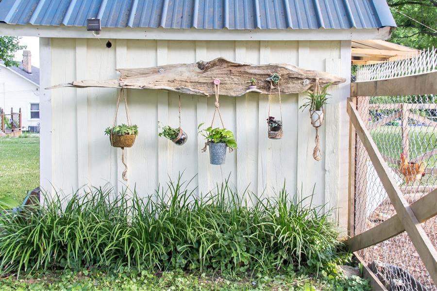 diy driftwood hanging planter