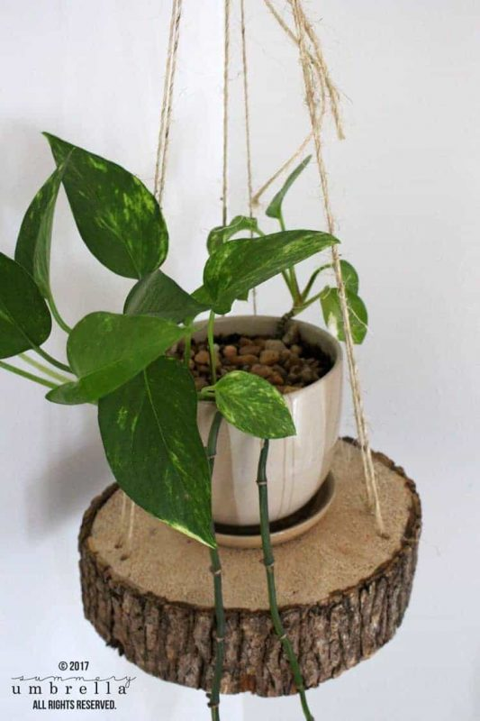 Wood Slice and Rope Hanging Planter
