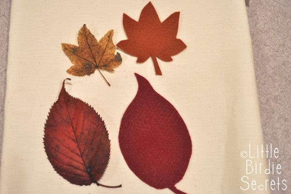 Leaf Tracing and Cut Outs