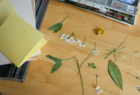 Flower Card Supplies