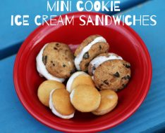 mini-cookie-ice-cream-sandwiches