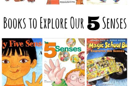 Children's Book to Explore Our 5 Senses