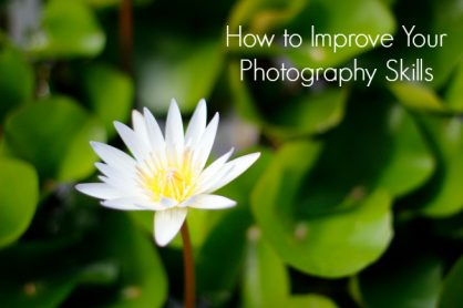 How to Improve Your Photography Skills