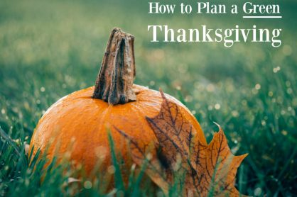 How to Plan a Green Thanksgiving