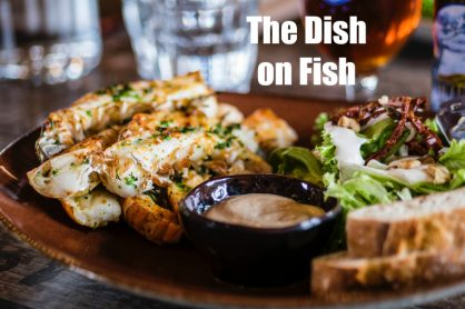 The Dish on Fish