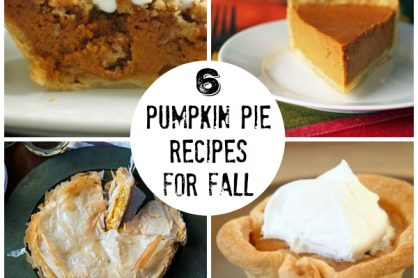 6 Pumpkin Pie Recipes for Fall