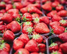 Fresh Farmer Market Strawberries @clemono2