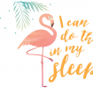 I Can Do This In My Sleep Flamingo