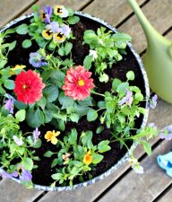Gardening Activities with Kids