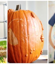 9 Creative Ways to Decorate Pumpkins