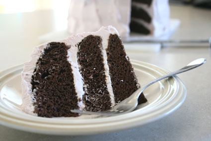 Frozen Yogurt Chocolate Cake