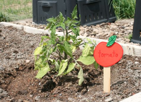 Craft Garden Marker