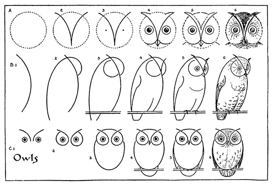The Graphics Fairy owl drawing tutorial