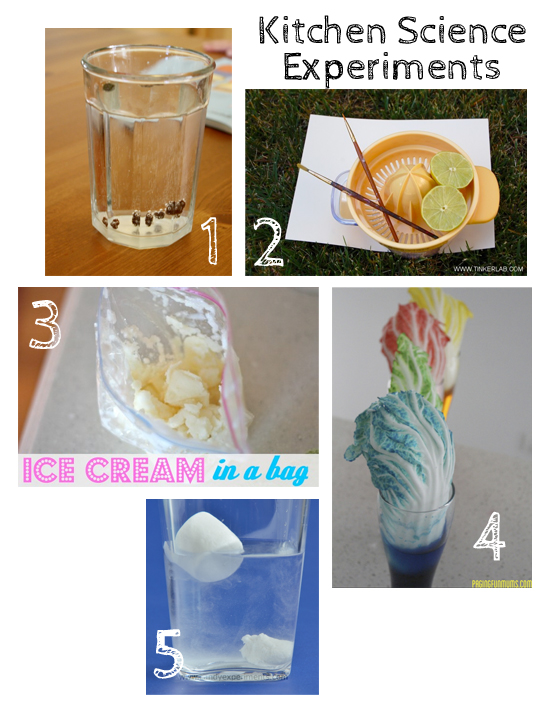10 Kitchen Science Experiments for Kids