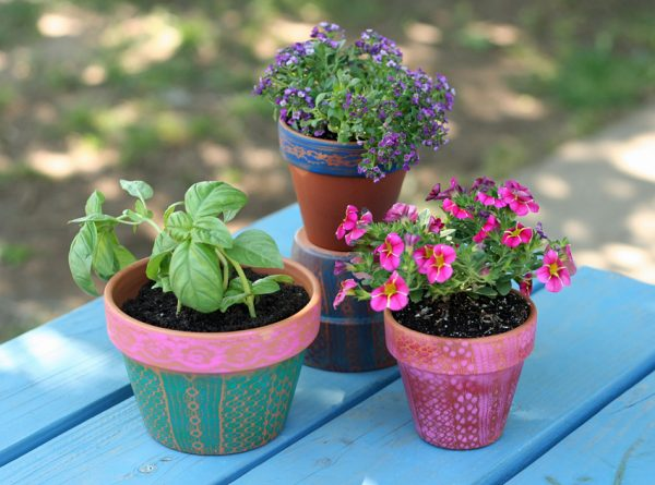 Airbrushed lacy flower pot gifts