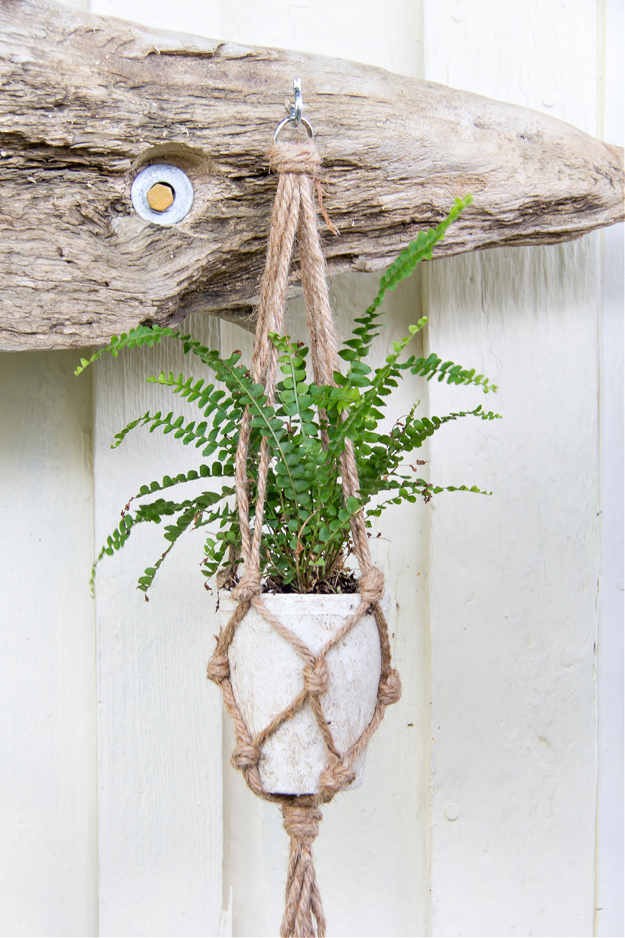 macrame plant hanger attached to driftwood