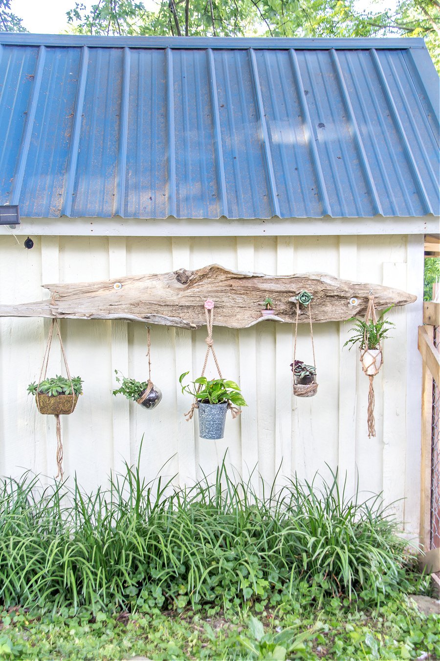 Handmade driftwood hanging planter on the side of a garden shed