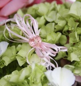 pinkribbon-hydrangea