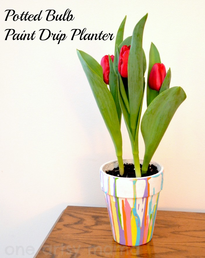 potted bulb drip planter