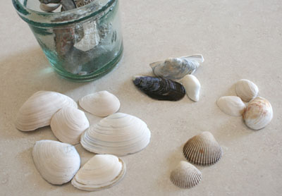 Broken Seashell Crafts http://www.makeandtakes.com/seashells-by-the-seashore