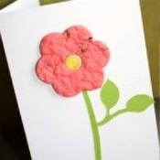 Handmade Plantable Greeting Card