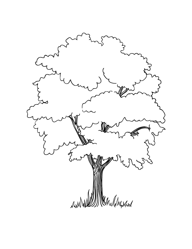 Growing Tree Coloring Page