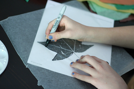 Tracing leaf shapes on wax paper